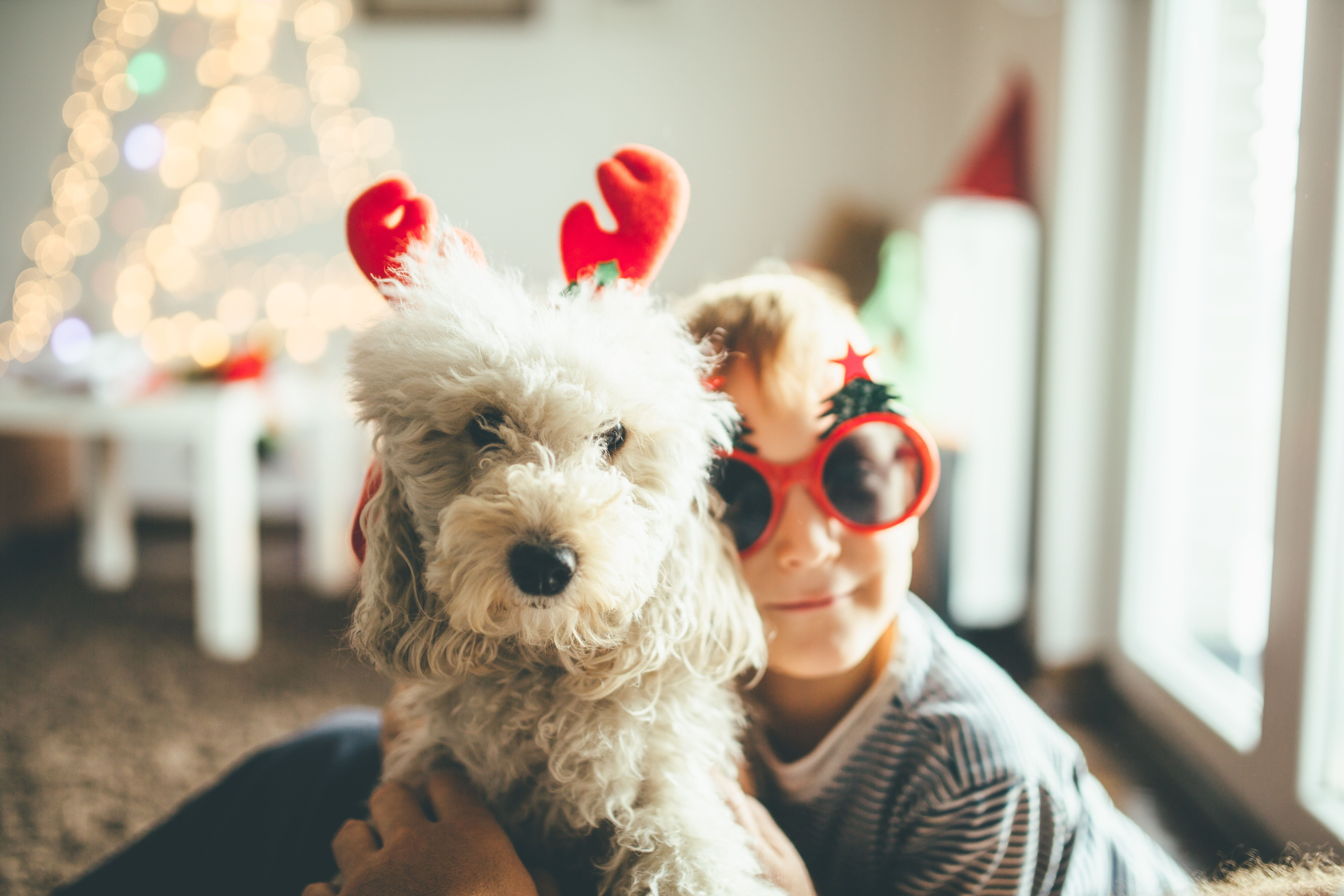 13 Things You Only Know If You Feel Festive Months Before