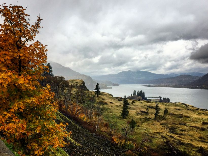 The Columbia River Gorge in November 2017, just two months after the fire, is in many places untouched and as beautiful as ev