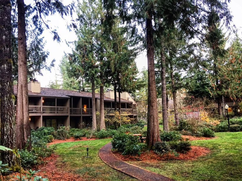 The Resort at the Mountain is set in huge evergreen forests at the base of Mount Hood.