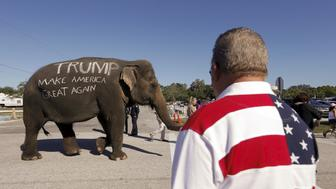 U.S. Republican presidential candidate Donald Trump supporters parade an elephant in front of a rally in Sarasota, Florida November 28, 2015.  REUTERS/Scott Audette