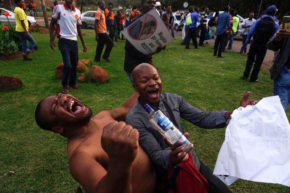 Men celebrate Mugabe's resignation.