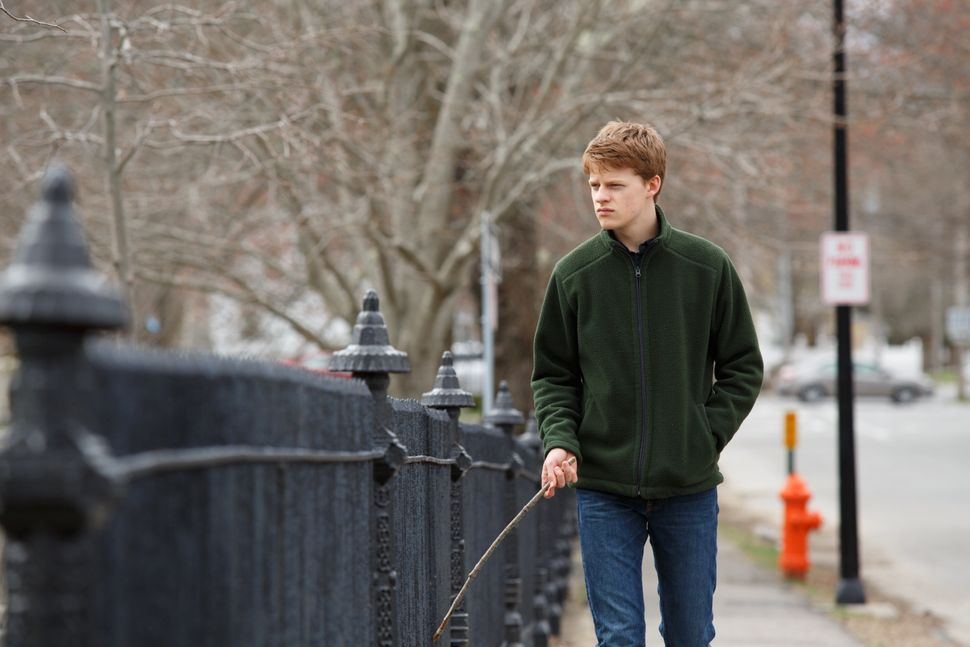 "Hedges in ""Manchester by the Sea."""