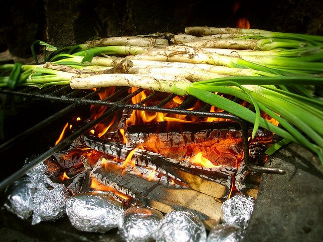 """Calçots cooking on a wood fire. Licensed under <a href=""""https://www.flickr.com/photos/niputaidea/4470568944/"""">CC BY-SA 2.0</a>."""