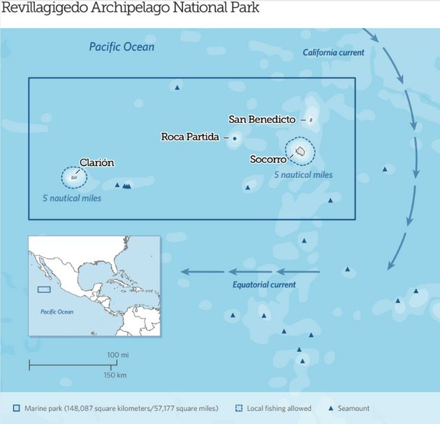 Mexico's Revillagigedo Archipelago National Park becomes North America's largest fully protected...