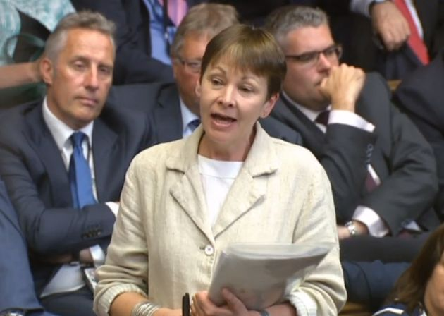 Green Party co-leader Caroline Lucas tabled an amendment in the Commons to the EU (Withdrawal) Bill on...