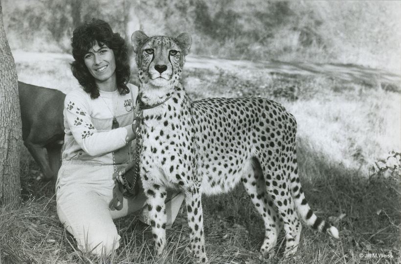 Dr. Laurie Marker with Khayam at Wildlife Safari