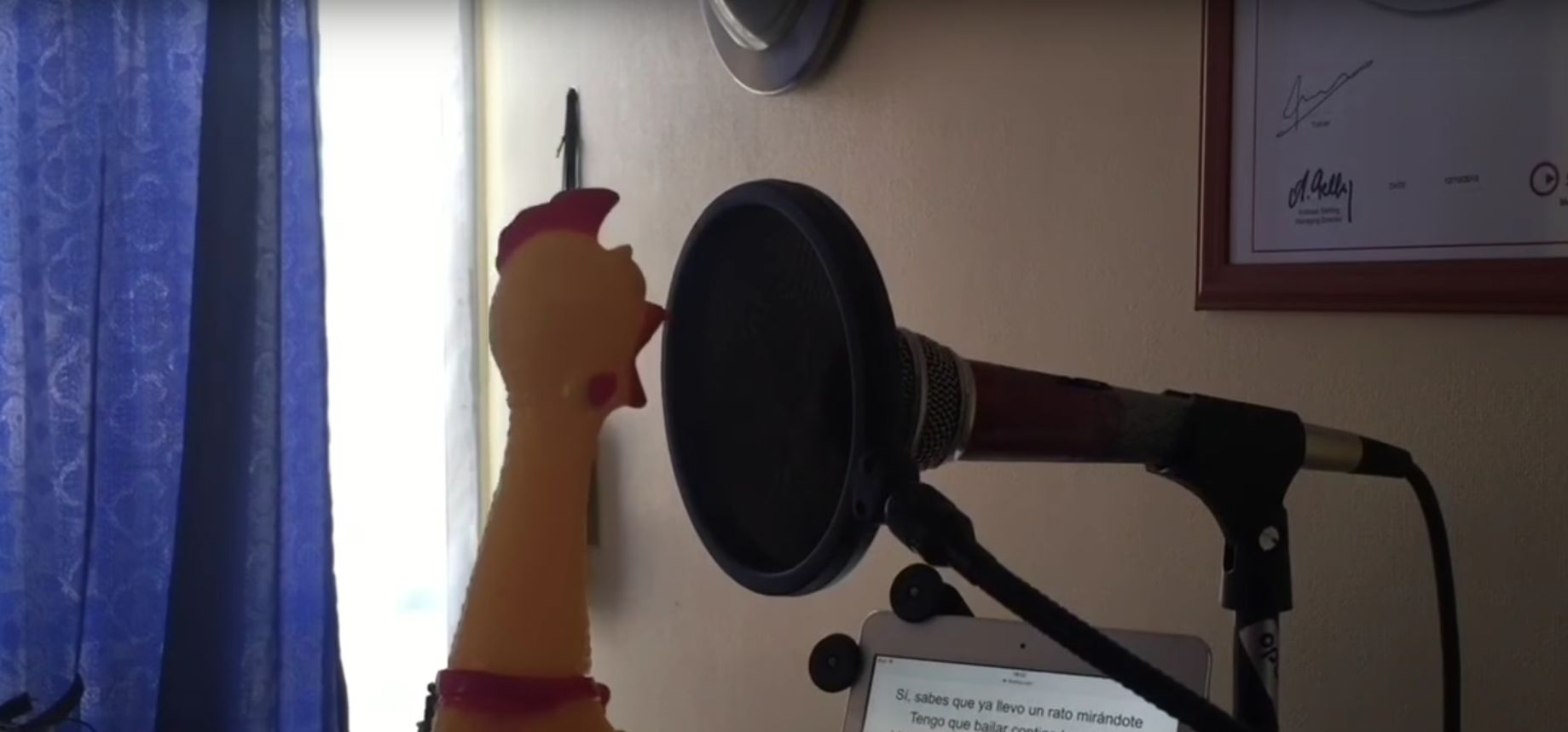 Watch This Rubber Chicken Sing 'Despacito' And Rethink Your Own