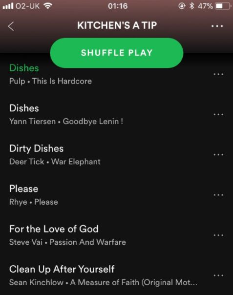 Guy Creates Hilariously Pass-Agg Spotify Playlist For Messy