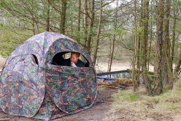 Hide in a tent in the woods, just like Prince Harry is demonstrating beautifully here with wildlife trust...