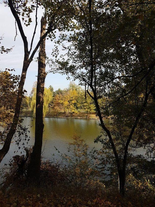 Άποψη λίμνης από το