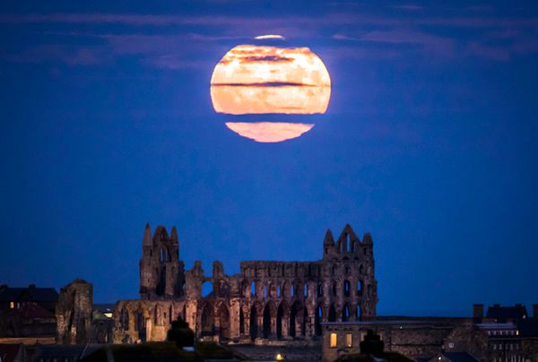 Whitby Abbey, Yorkshire, United Kingdom.