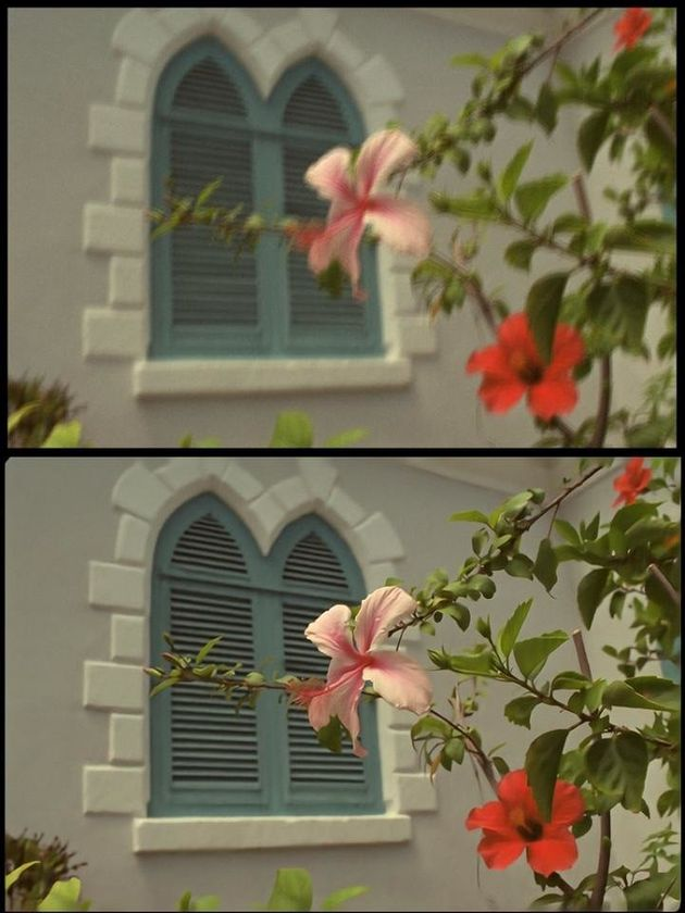 Incredibly This Software Can Turn Your Blurriest Photo Into Something That's Razor