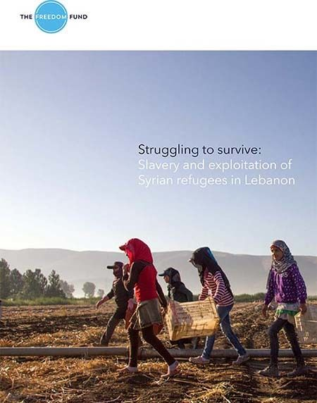 <em>Screen shot of The Freedom Fund Lebanon Report</em>