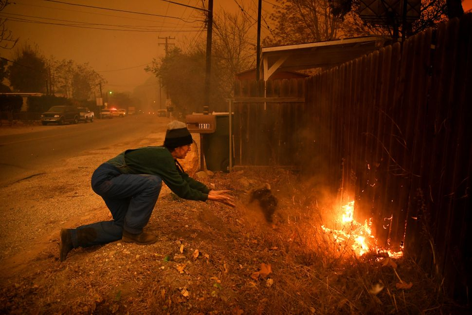 Carolyn Potter tries to save her house from the flames as she throws dirt on her fence in Ventura County's Casita Springs com