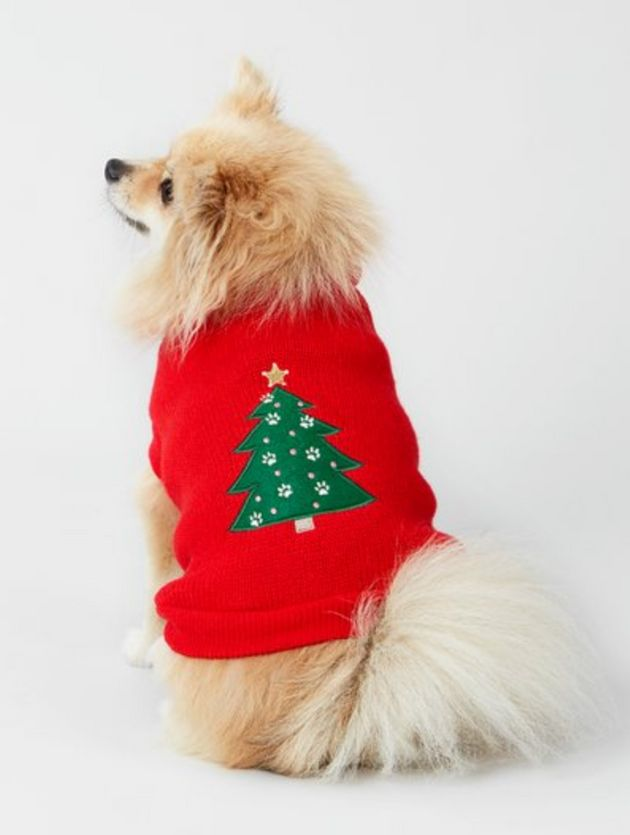 Aldi Matching Jumpers: Christmas Jumpers For Dogs Is Becoming A Major High Street Trend For