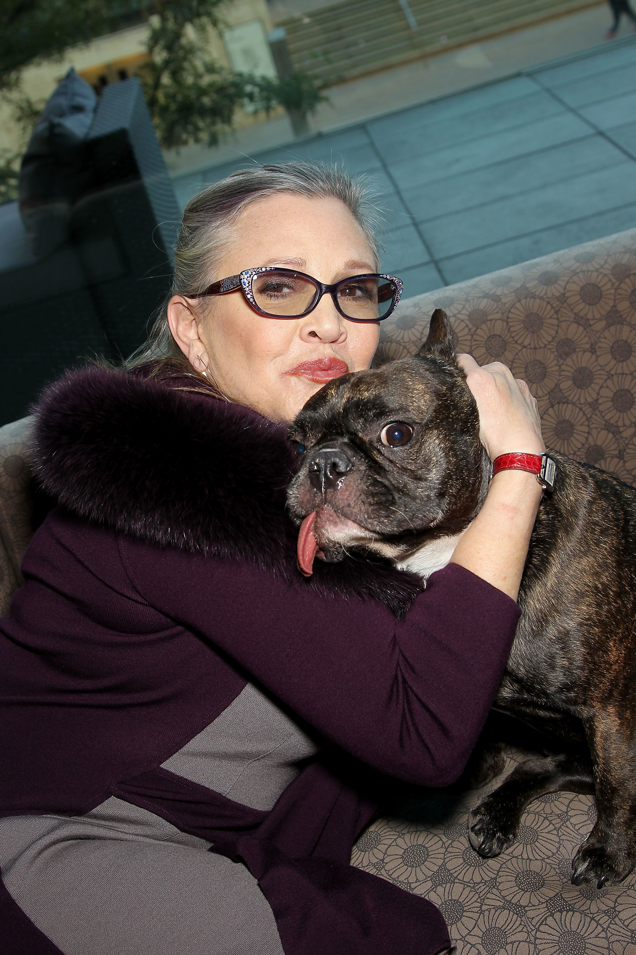 'Star Wars: The Last Jedi' Director Confirms Carrie Fisher's Dog Gary Fisher Has A