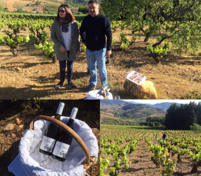 "<em>Marcos and Elena Garcia, brother and sister team at</em> <a rel=""nofollow"" href=""http://www.vinosvaltuille.com/"" target="""