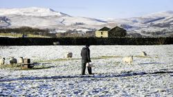 More Snow Forecast After It Blankets Much Of Britain Amid Weather