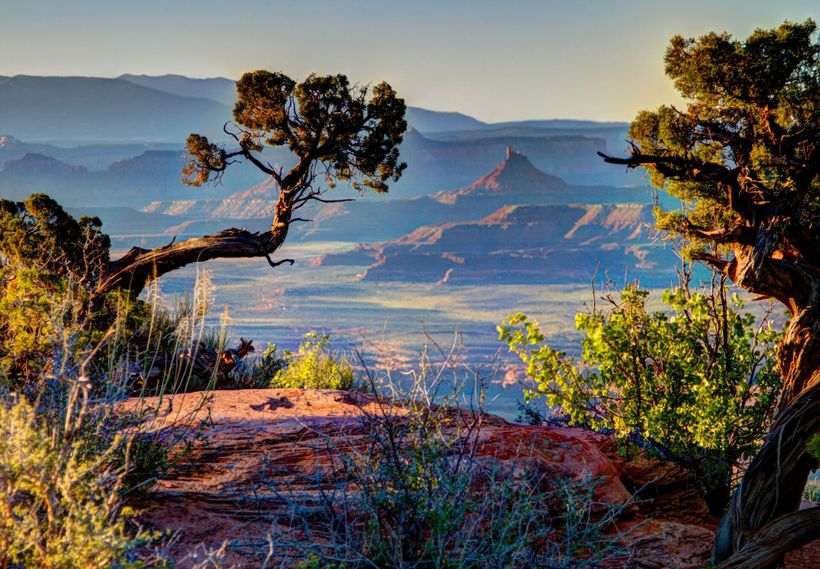 Bears Ears National Monument, UT. Photo © Josh Ewing, courtesy Friends of Cedar Mesa.
