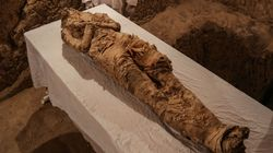 3,500 Year Old Mummy And 'Beautiful' Wall Mural Discovered In Egyptian