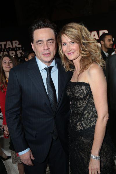 Benicio Del Toro and Laura Dern arrive on the red carpet for the world premiere of <em>Star Wars: The Last Jedi</em>
