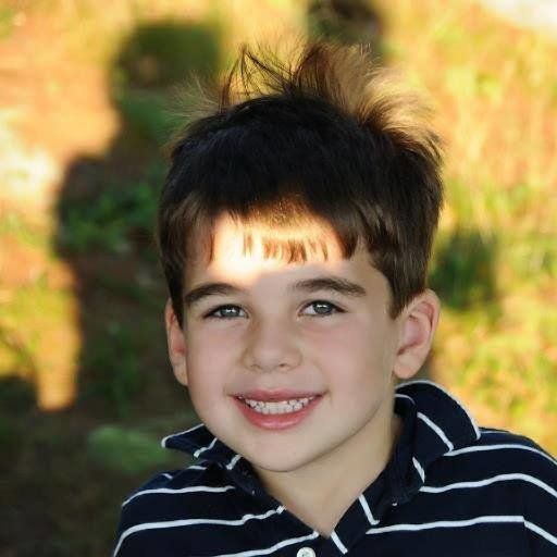 "<a href=""http://www.noahpozner.com/"" target=""_blank"">Noah Pozner</a> was an energetic 6-year-old who loved Legos, p"