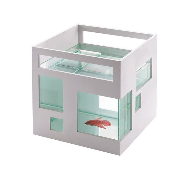 """Okay, this isn't just a gift for teens. Can we get a <a href=""""https://www.amazon.com/Umbra-FishHotel-Aquarium-Goldfish-Bettas"""