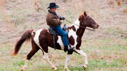 Roy Moore Rode A Horse Named 'Sassy' To His Polling