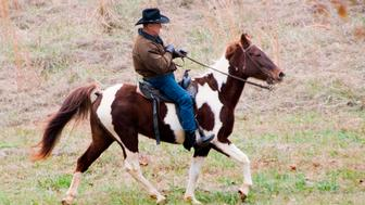 Republican Senatorial candidate Roy Moore rides his horse to the polling station to vote in  Gallant, Alabama, on December 12, 2017. The state of Alabama holds a closely-watched special election for US Senate featuring Republican candidate Roy Moore, who is endorsed by President Donald Trump despite being accused of molesting teenaged girls. / AFP PHOTO / JIM WATSON        (Photo credit should read JIM WATSON/AFP/Getty Images)