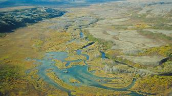 The Upper Tularik Floodplain in the Bristol Bay watershed in Alaska is seen in an undated handout picture provided by the Environmental Protection Agency (EPA). Large-scale mining in the Bristol Bay watershed poses serious risks to salmon and native cultures in this pristine corner of southwest Alaska, the U.S. Environmental Protection Agency said in a report released on Wednesday. REUTERS/Environmental Protection Agency/Handout via Reuters (UNITED STATES - Tags: ENVIRONMENT) ATTENTION EDITORS -  THIS IMAGE HAS BEEN SUPPLIED BY A THIRD PARTY. FOR EDITORIAL USE ONLY. NOT FOR SALE FOR MARKETING OR ADVERTISING CAMPAIGNS.IT IS DISTRIBUTED, EXACTLY AS RECEIVED BY REUTERS, AS A SERVICE TO CLIENTS