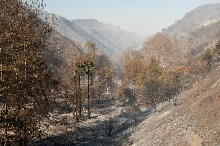 Smoke hangs over a canyon damaged by the Skirball fire near the Bel Air neighborhood on the west side of Los Angeles, Califor