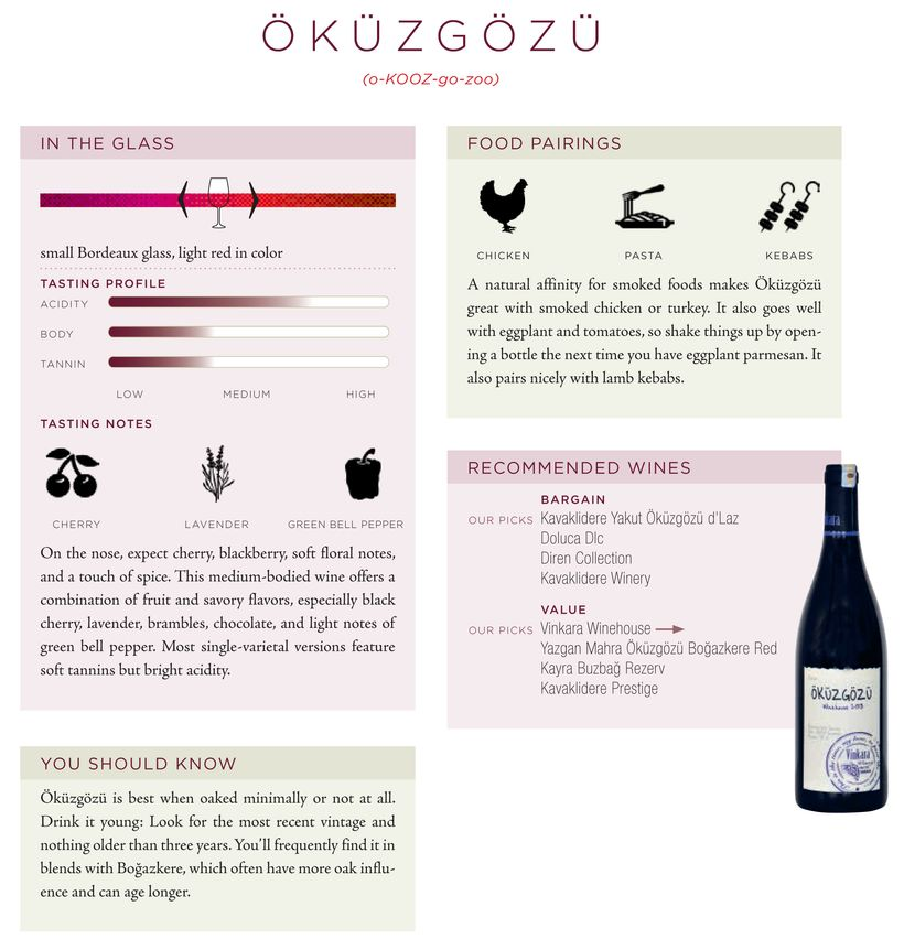"""These quick reference pages accompany each grape in """"Red Wine"""" and the authors even tell us the proper pronunciation"""