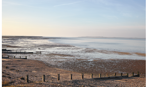 The coast of Kent, where chef Stephen Harris finds inspiration, along with seaweed, salt, and oysters