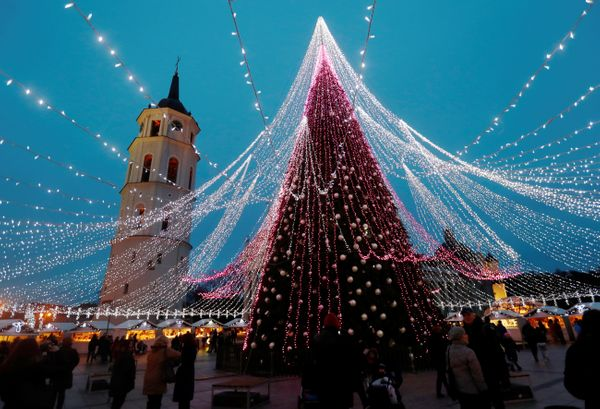 A stunning Christmas tree in Vilnius, Lithuania.