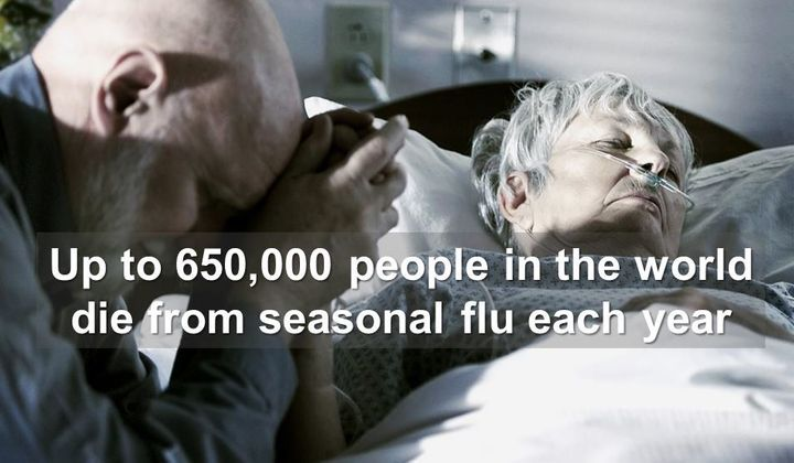 <p>Up to 650,000 people in the world die from seasonal flu each year.</p>