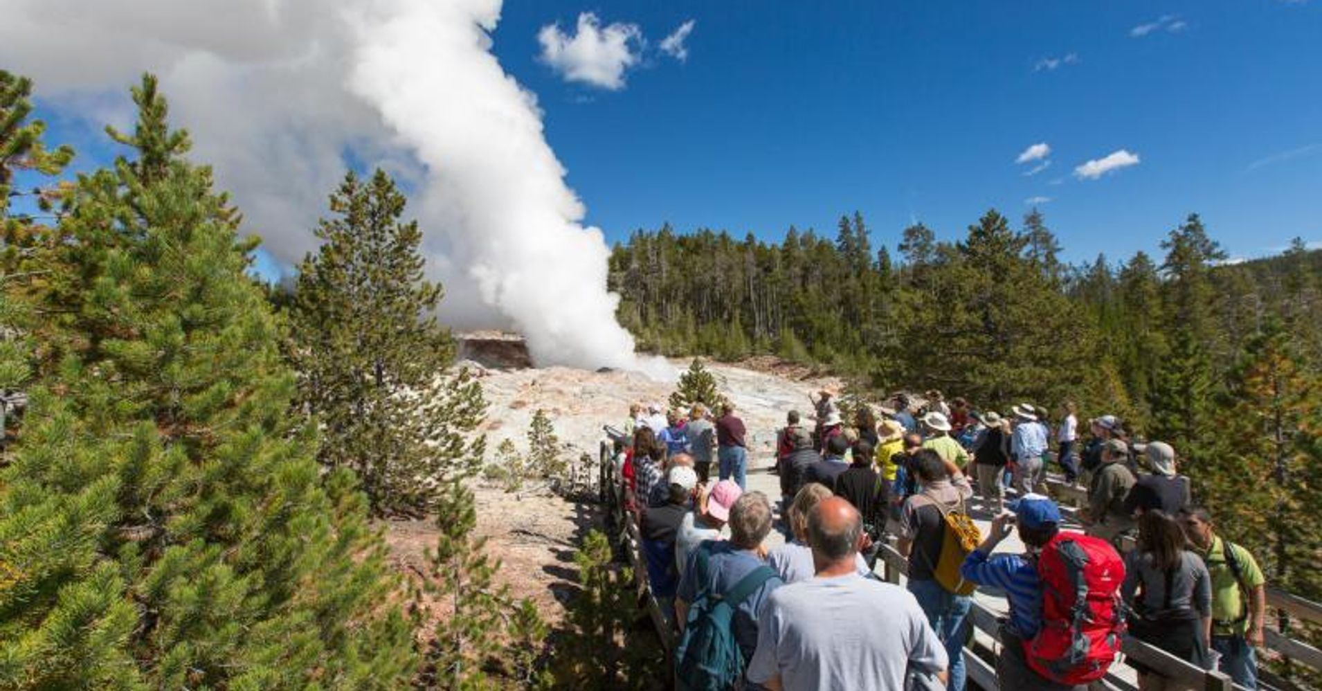 Urgent: Extended Deadline -- the National Park Service Needs to