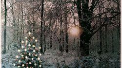 The Year I Found My True Christmas