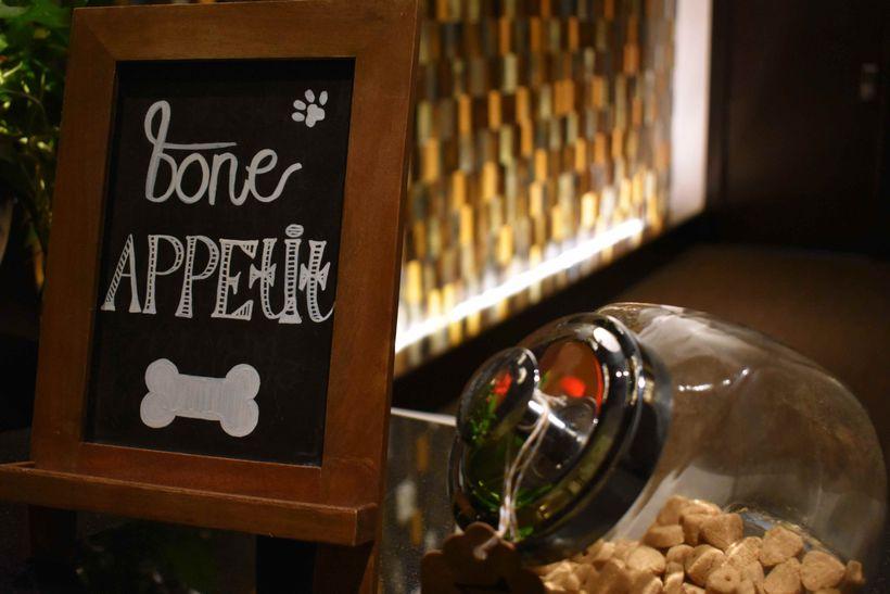 Dog-friendly Hotel Solamar