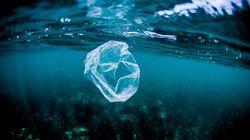 Plastik oder