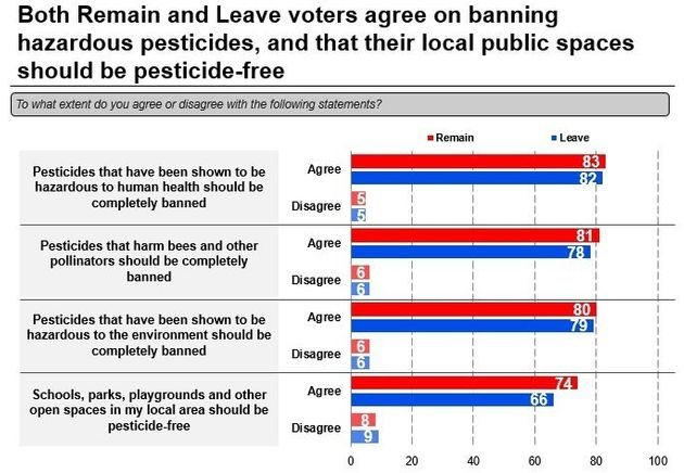 Opinions were matched among Leave and Remain