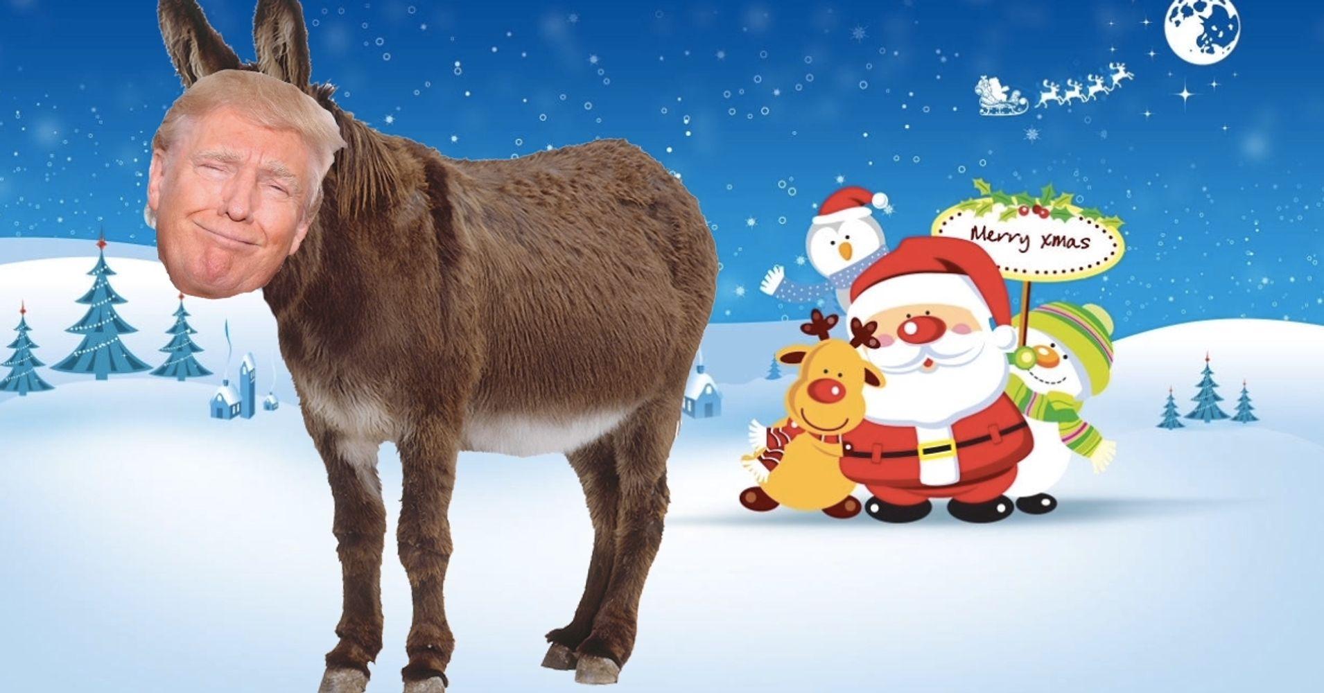 Donald Trump The Donkey Huffpost