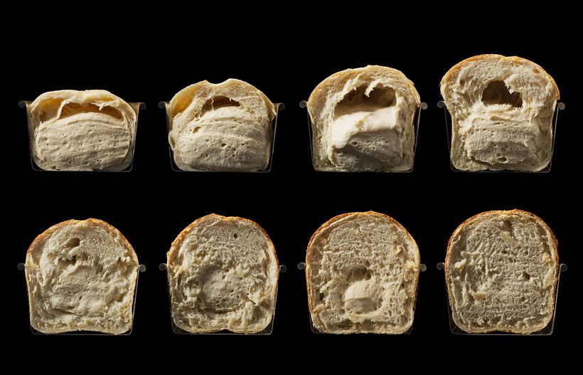 Baking sequence cutaway, from <em>Modernist Bread </em>by Nathan Myhrvold and Francisco Migoya