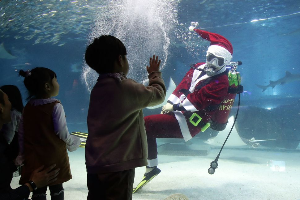 A diver wearing a Santa Claus costume swims in the tank at COEX Aquarium on Dec. 10, 2017, in Seoul, South Korea.
