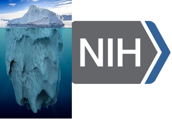 The challenge of change at the NIH