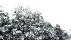 Στα λευκά πολλές περιοχές της χώρας. Πυκνό χιόνι και στην