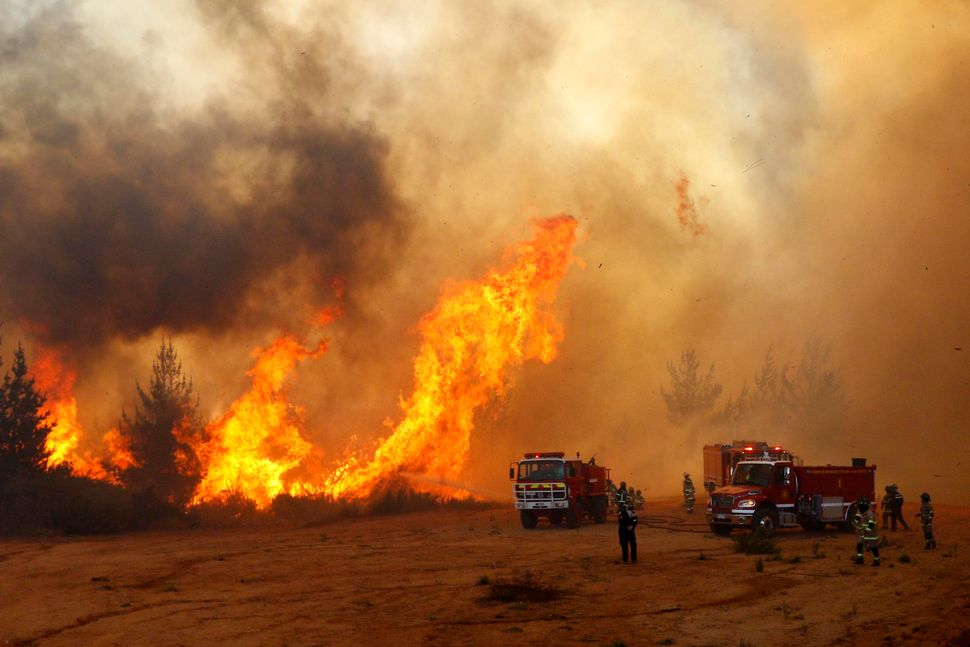 Firefighters work to put out a forest fire in Valparaiso, Chile.