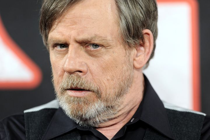 "Said Hamill: ""Maybe he's Jake Skywalker."""