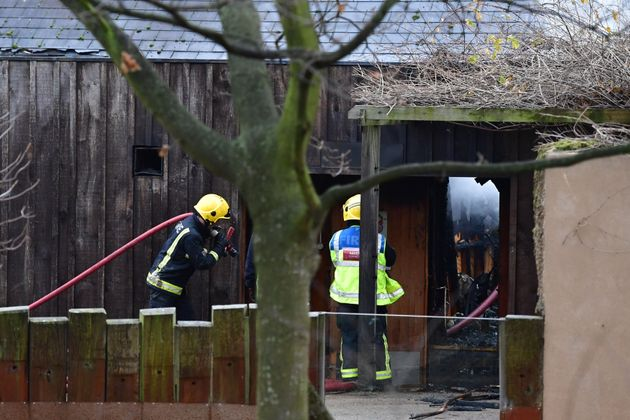 Blaze at London Zoo kills aardvark
