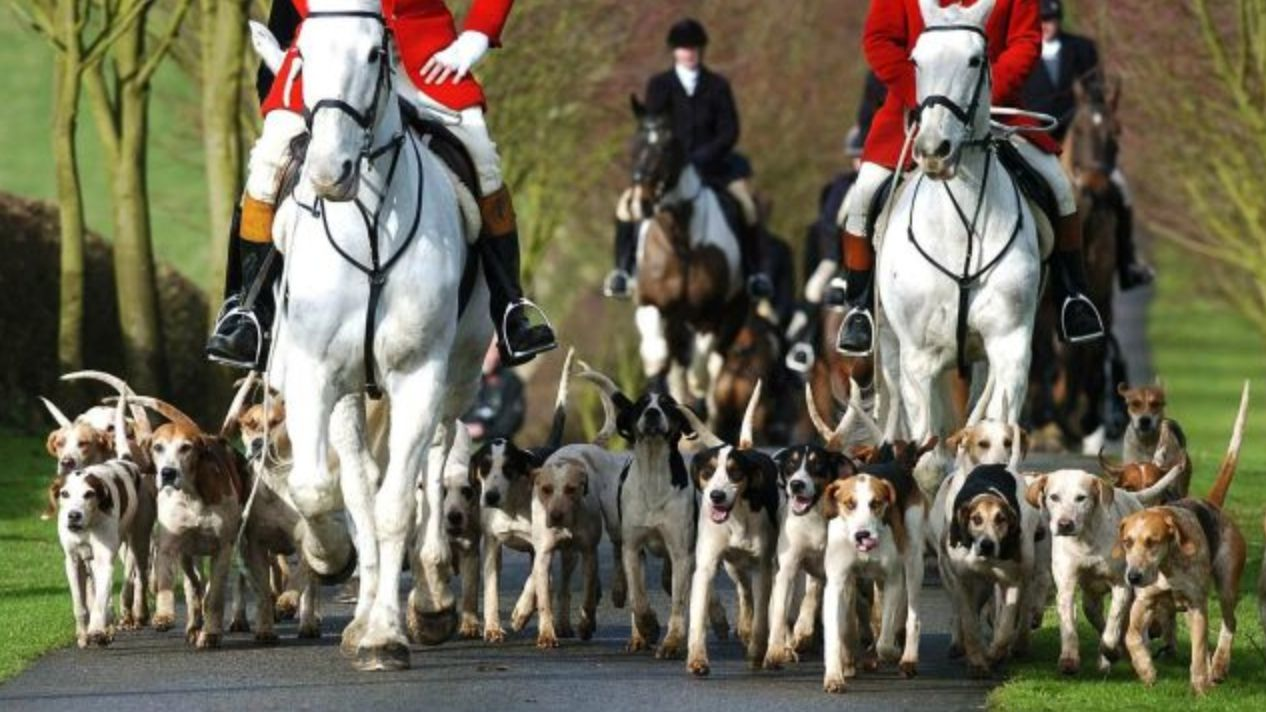 Theresa May 'Set To Abandon Free Vote Pledge On Fox Hunting Ban', Report
