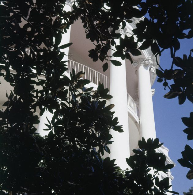 The south portico of the White House is framed by a Magnolia grandiflora planted by Andrew Jackson in...